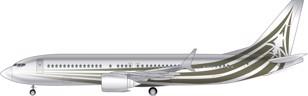 Boeing BBJ 737 Max 8 Image